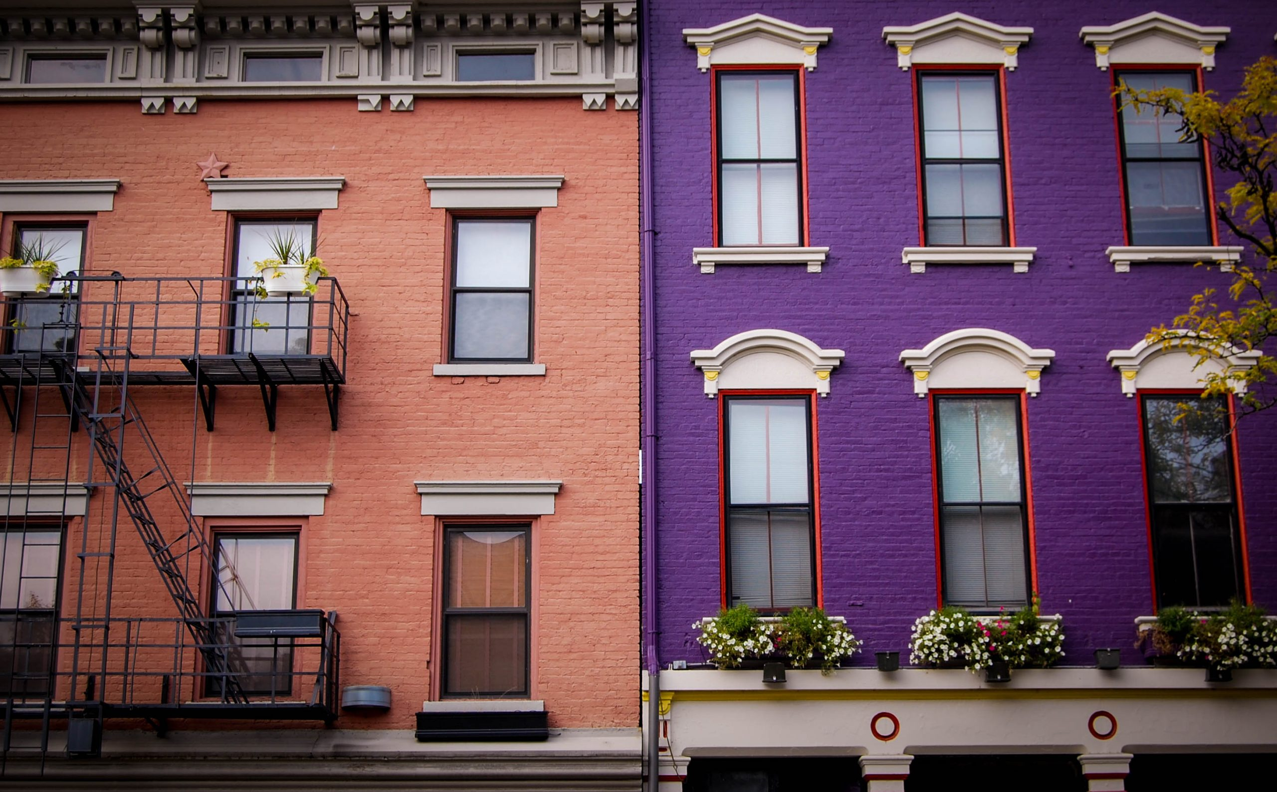 pink and purple italianate homes in over-the-rhine